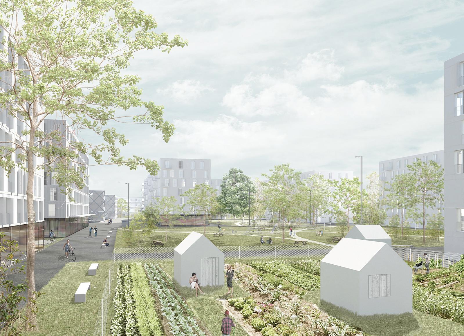 Logements collectifs à Carouge, Suisse (concours) - architecte